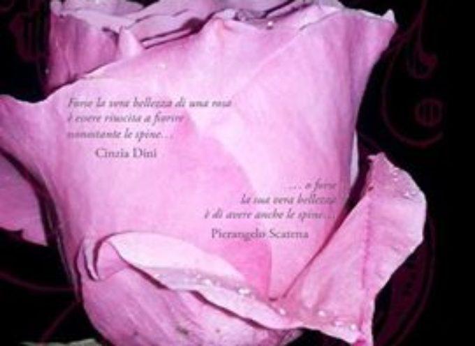 presentazione del nuovo libro di poesie di Cinzia Dini, a castelnuovo di g.