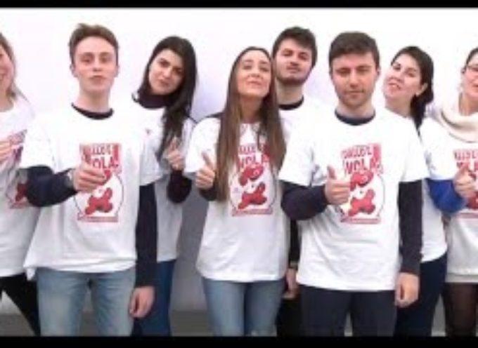 si cercano donatori di sangue a lucca[video]