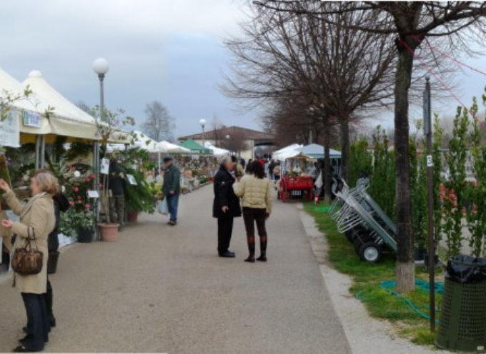 Mostra Mercato del giardinaggio e del vivere all'aria aperta, A LUCCA