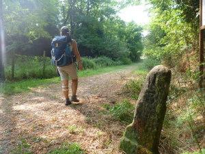 L'antica Via Francigena a Galleno, verso San Miniato