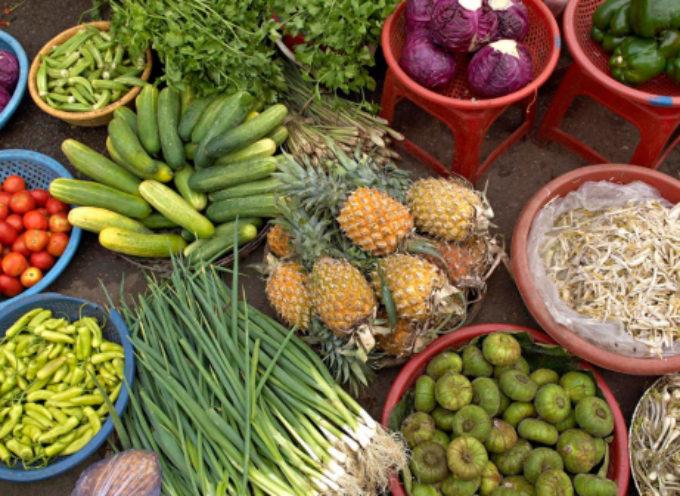 Coldiretti: dai broccoli cinesi al basilico indiano, ecco la blacklist dei cibi più contaminati