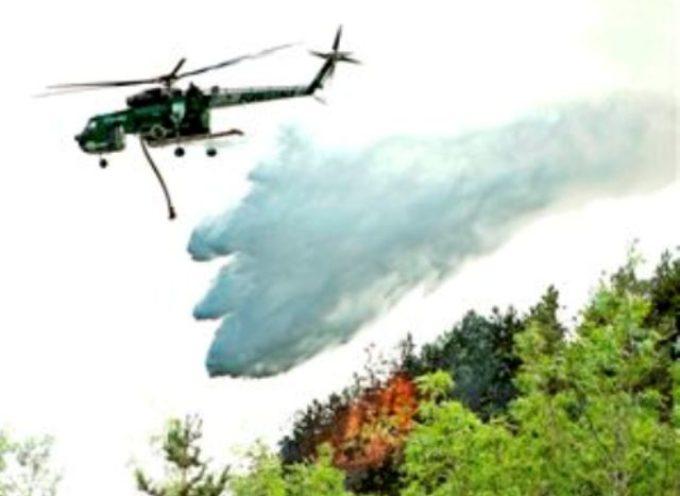 Intervento del sindaco Luca Menesini sugli incendi: