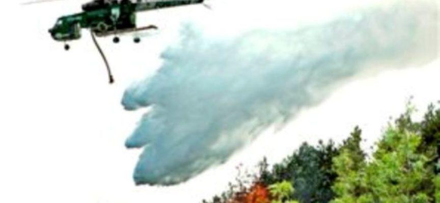 Un incendio è scoppiato, nella serata di ieri nei boschi del monte Piglione in località Ritrogoli, nel comune di Pescaglia.