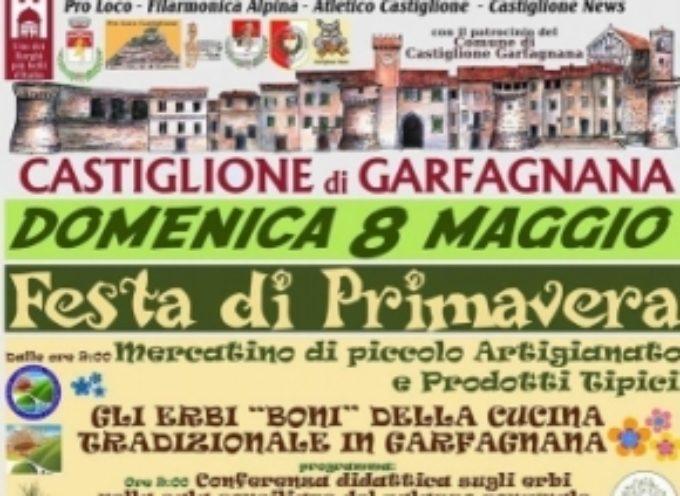 FESTA DI PRIMAVERA, Castiglione di Garfagnana