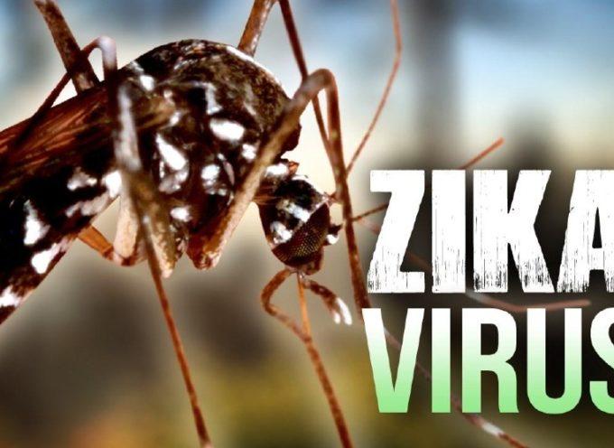 Zika: Italia e Francia fra i Paesi più in pericolo nell'Ue. Per l'Oms il rischio è concreto