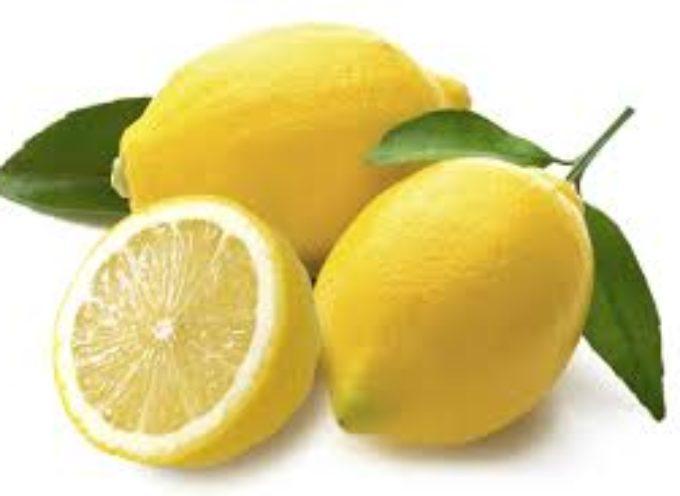 dovresti sempre congelare i tuoi limoni. La tua salute ringrazierà!
