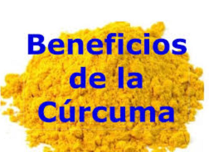 La Curcuma un nuovo alleato per proteggere il cervello contro l'Alzheimere e l'Ictus