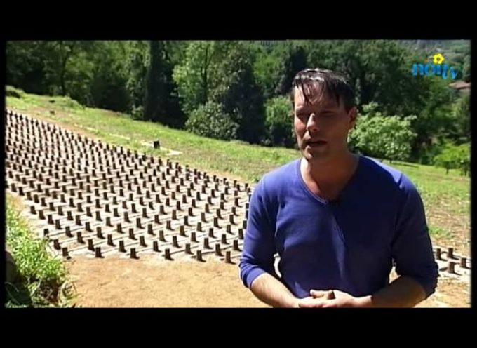 """Lo spettacolo della """"gazzarra"""" a Pieve di Camaiore[VIDEO]"""