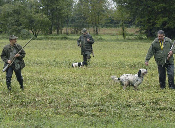 Caccia: via libera alla modifica sugli ambiti territoriali di caccia