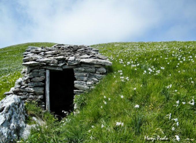 La leggenda del Monte Croce: dai saccheggi dei feroci Saraceni per arrivare alle sue candide giunchiglie
