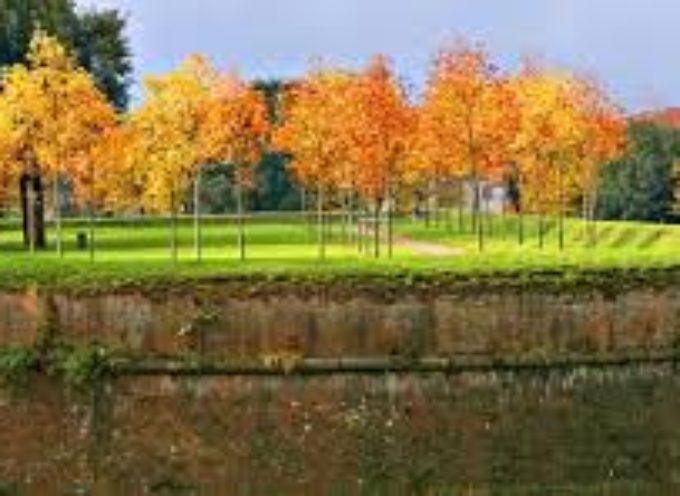 lucca –  Per le mie proposte, seguirò le tre classiche divisioni del Turismo