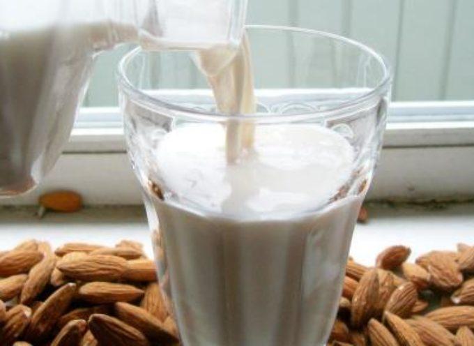Latte di mandorla: proprietà, benefici, calorie e ricetta fatta in casa.