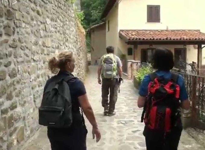 TREKKING – Da Lupinaia alle Prade Garfagnine[video]