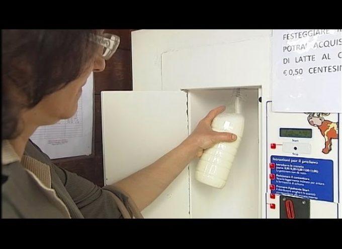 Grande festa per i primi 10 anni della casina de latte[video]