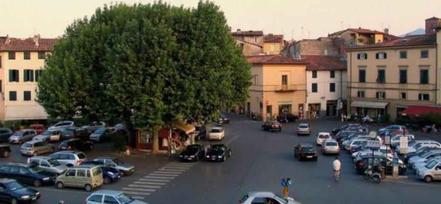 lucca –  rimozione  per la sosta in Piazza Santa Maria