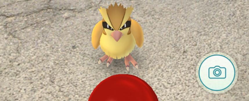 Pokémon GO: nel borgo della Fattoria di Maiano il primo raduno fiorentino