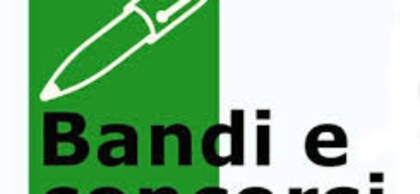 AVVISO BANDO DI PUBBLICO CONCORSO, PER L'ASSEGNAZIONE DI N. 2 AUTORIZZAZIONI PER IL SERVIZIO DI NOLEGGIO CON CONDUCENTE A MEZZO DI AUTOVETTURA.