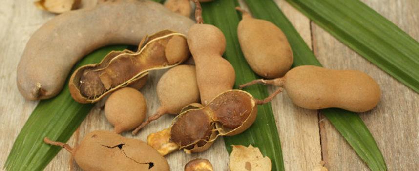 Tamarindo: una spezia dai mille benefici