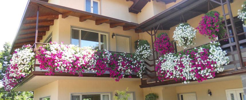 Vincitori Balconi fioriti Villa Collemandina edizione 2016