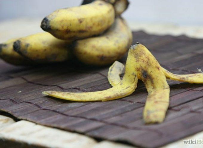 A Cosa Può Servire La Buccia Della Banana? Ecco 17 Usi Che Non Ti Aspettavi
