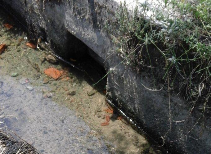 Rischio siccità, al via la calendarizzazione della distribuzione irrigua dei campi di Lucchesia e Piana