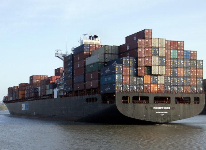 Container contaminati: le specie e gli agenti patogeni più invasivi come Xylella sono diffusi oggi attraverso i container.