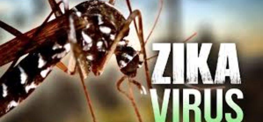 Virus zika, i casi si moltiplicano in Italia. Rispetto ai 31 casi di alcune settimane fa aggiornato il dato a 61