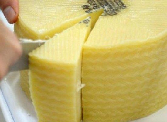 """Commissione Ue diffida Italia: """"Permetta di produrre formaggio anche senza latte"""""""