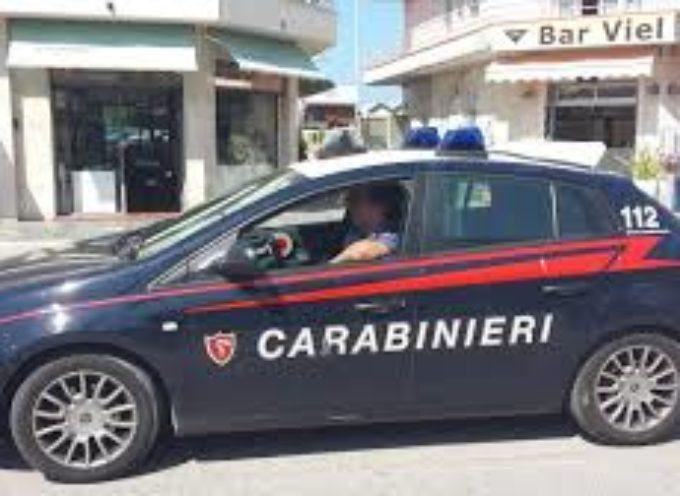 Omicidio di ferragosto,  nella notte in pineta a Viareggio.