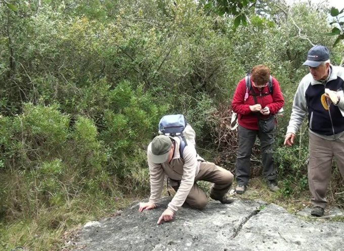 MONTE COTROZZI: Alla ricerca delle incisioni rupestri – di Sergio  Colombini