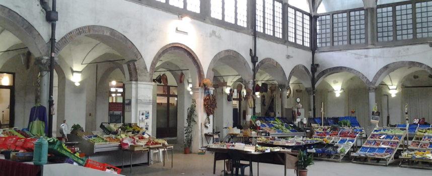 NOTTE BIANCA, IL DEBUTTO DEL MERCATO DEL CARMINE