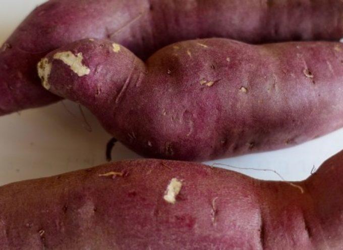 14 buoni motivi per mangiare patate dolci