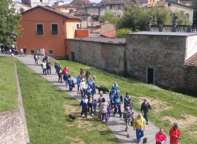 """Torna """"Lucca di Notte"""" la tradizionale marcia non competitiva aperta a tutti che fa scoprire la città e le Mura di sera"""