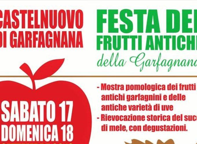 CASTELNUOVO DI G. FESTA DEI FRUTTI ANTICHI