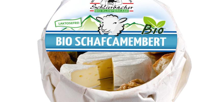 Formaggio Bio Camembert con salmonellosi.