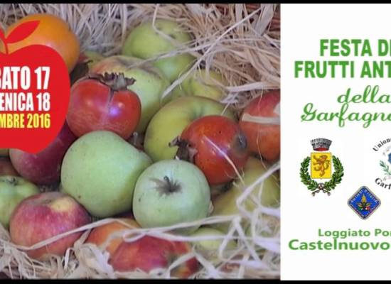 Sabato 17 e domenica 18 a Castelnuovo Garf. . . Festa dei Frutti antichi