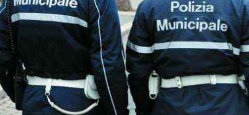 Oltre 80 interventi a tutela dell'ambiente effettuati dalla Polizia municipale nel mese di settembre, a Lucca