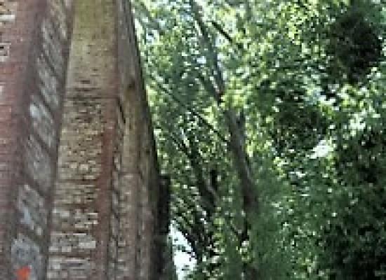 Acquedotto del Nottolini: tanto tuonò che piovve…ro alberi……!!!