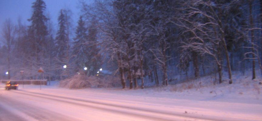 arrivata la prima neve sui passi dell'appeninno