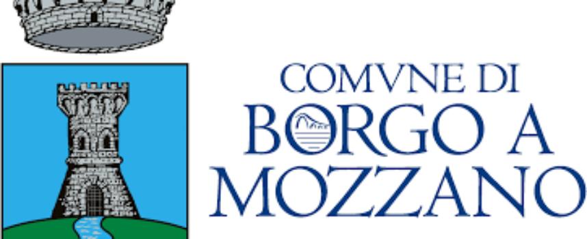 PARTITO IL SERVIZIO CIVILE A BORGO A MOZZANO