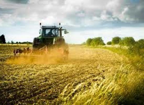 Le opportunità del Pit per l'agricoltura lucchese