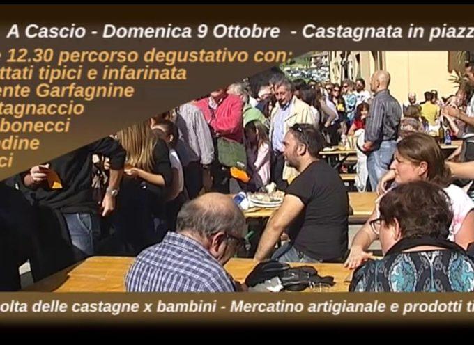 Domenica 9 Ottobre . . . . Castagnata in Piazza a Cascio