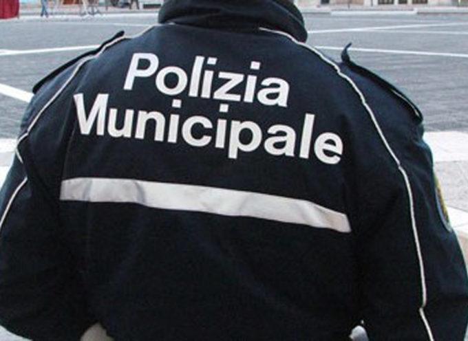 Dal 27 luglio entra in vigore il nuovo regolamento di Polizia Urbana, a lucca