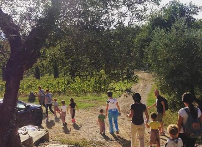 montecarlo – Tutti in vigna con Open Farm