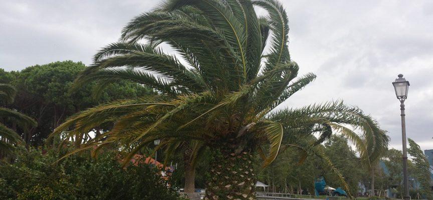 Arriva il freddo, per domani allerta meteo: vento forte di grecale