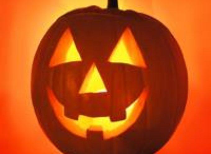 La zucca: non solo ad Halloween!