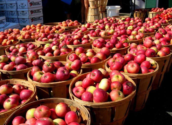 Sulle nostre tavole 8 mele su 10 contaminate: ALLARME