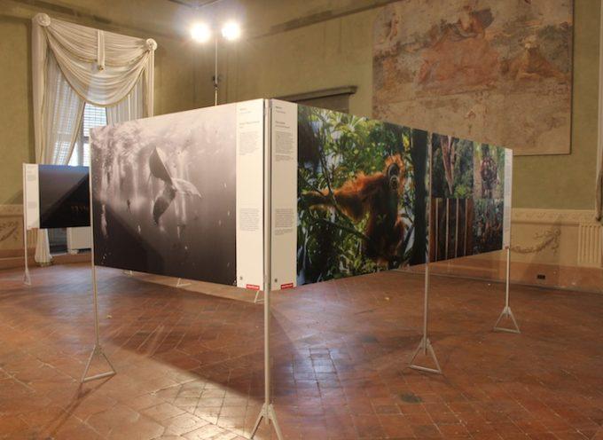 Al via l'edizione 2016 di Photolux: tre mostre e due anteprime | Palazzo Ducale, 19 novembre – 11 dicembre |