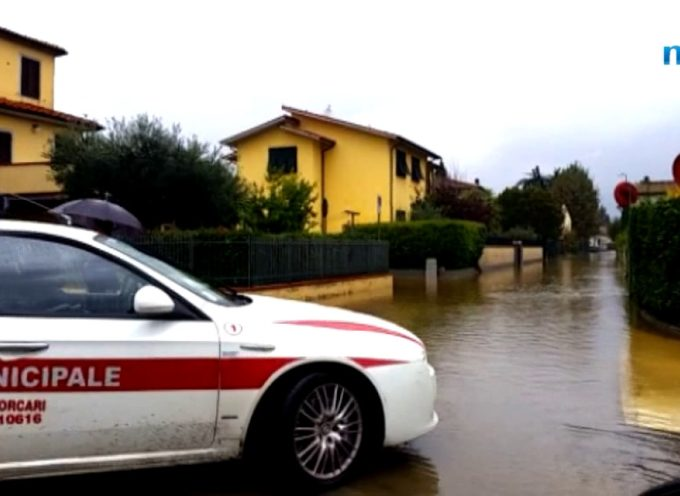 Pioggia intensa su Lucca e la Piana, allagamenti e disagi