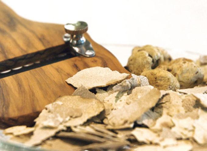 Tartufo bianco:  San Miniato capitale del prezioso tubero